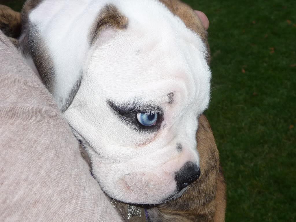 Baby blue!