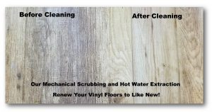 Vinyl Floor Cleaning…