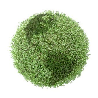 """What makes a Carpet Cleaning company """"Green""""?"""