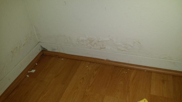 luckily the laminate floor did not get damaged
