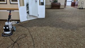 Our Low Moisture Process Works Wonders at Helping Carpets Stay and Looking Clean Longer